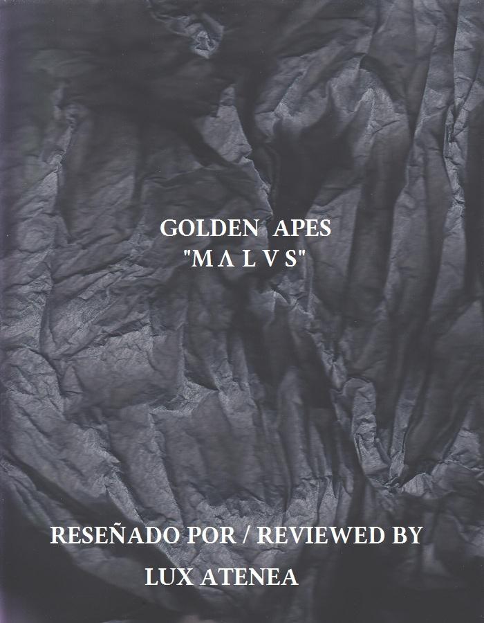 """GOLDEN APES """"M Ʌ L V S""""."""