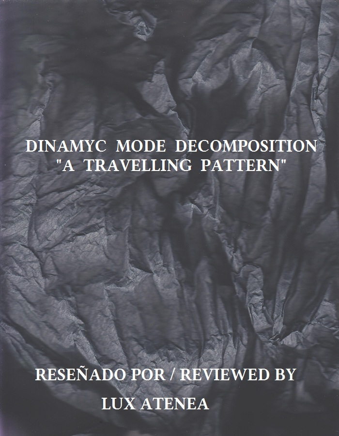DINAMYC MODE DECOMPOSITION - A TRAVELLING PATTERN